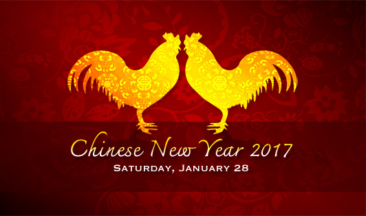 Image result for chinese new year 2017 animal